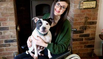 Owning a Dog as a Wheelchair User | Disabled Travel with Georgina